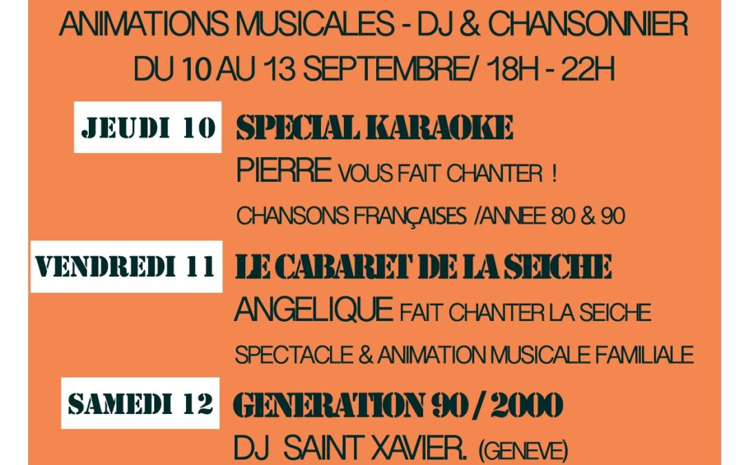 Animations musicales, DJ et chansonniers
