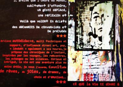 Expos Franck Beauché à la Seiche, Sevrier